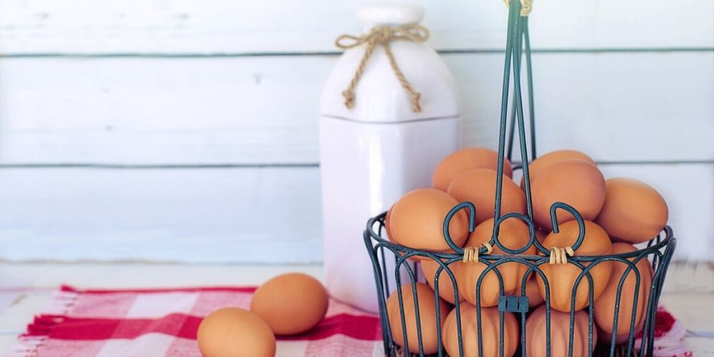 use eggshells in your garden